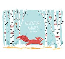 Adventure Awaits Photographic Print