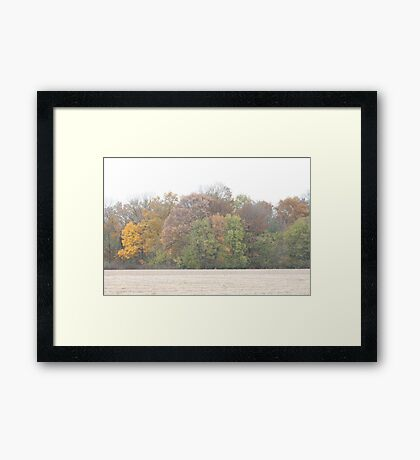 Colors From Across The Field Framed Print