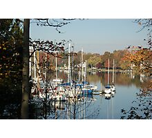 The Masts Of Fall Photographic Print