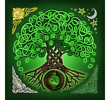 Circle Celtic Tree of Life Photographic Print