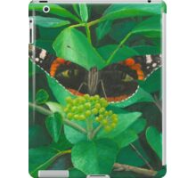 red admiral - green eyes iPad Case/Skin