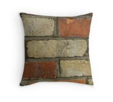 Just Another Brick In The Wall!   (VIEW LARGE) Throw Pillow