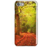 DANBURY WOODS ESSEX  iPhone Case/Skin