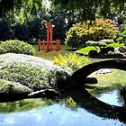 Japanese Garden by Lawrence Henderson