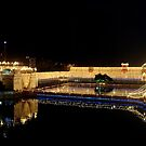 GOLDEN TEMPLE PANORAMA by manumint