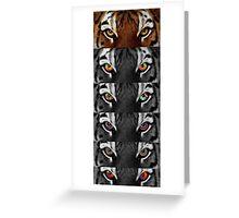 Tiger's eye Greeting Card