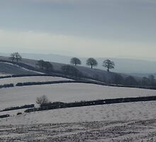Snowy scene  on Hills Near Bradninch by peteton
