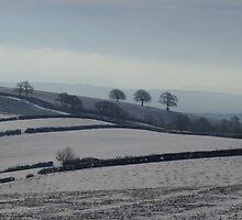 Snowy scene  on Hills Near Bradninch by peteton
