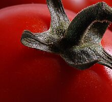 Cherry tomato close up by Derivatix