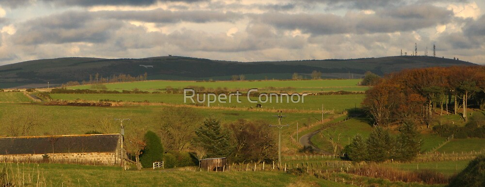 Skellybogs and the Mormond Braes by Rupert Connor