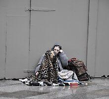 The faithful mate by STEPHANIE STENGEL | STELONATURE PHOTOGRAPHY