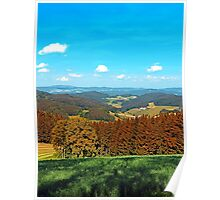 Forest scenery with panoramic view Poster