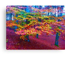 Forest, color leaves Canvas Print