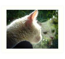 Feline Reflection Art Print