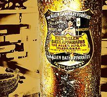 The Allen Bath Apparatus by Nadya Johnson