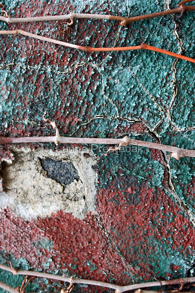 ....lines of separation.... by Lynne Prestebak
