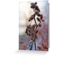 Burdock Bush, by Onondaga Lake Greeting Card
