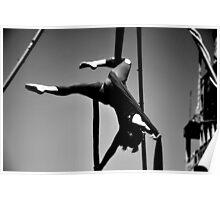Flexible Poster