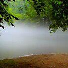 Misty morning..... by DaveHrusecky