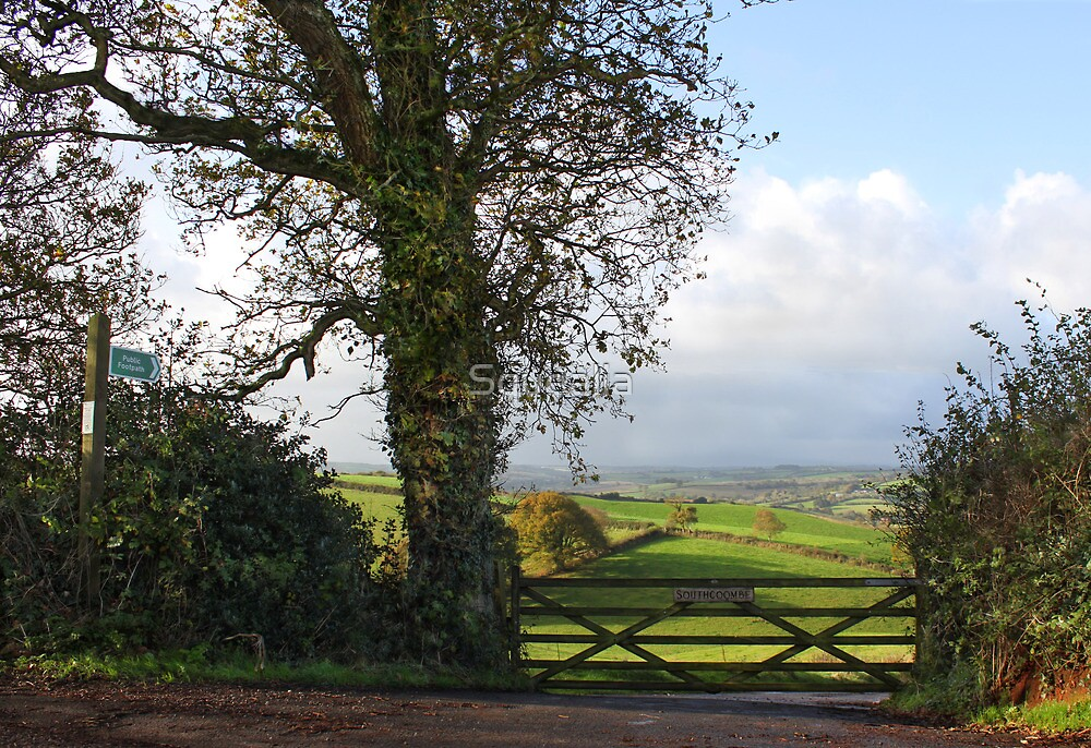 Southcoombe, Nr Crediton, Devon by Squealia