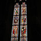 Stained glass window, Cloisters, NY by Jaee Pathak