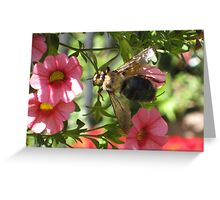 Beezy as can bee Greeting Card