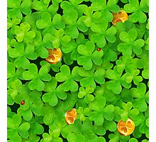 Saint Patrick's clovers pattern with golden coins and ladybugs Photographic Print