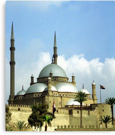 Mosque of Muhammad Ali by Wayne Gerard Trotman