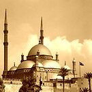 Mosque of Muhammad Ali (Sepia) by Wayne Gerard Trotman