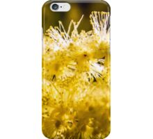 Wattle Flower iPhone Case/Skin