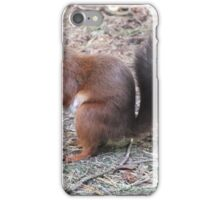 This Is My Best Side - Red Squirrel iPhone Case/Skin