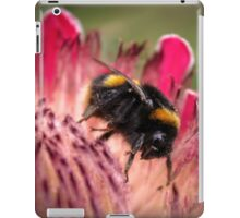 Bee in Protea #2 iPad Case/Skin
