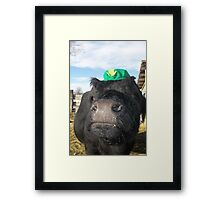 Black Irish Framed Print