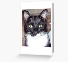 Sonny Greeting Card