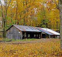 Shack and Barn In The Fall by marchello
