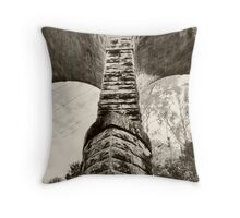 Viaduct arch Throw Pillow
