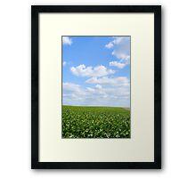 Sausage field Framed Print