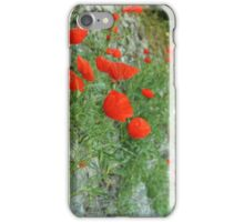A Wall of Poppies iPhone Case/Skin