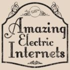 The Amazing Electric Internets by Ross Robinson