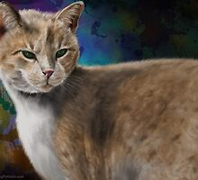 Beautiful Furry and Fluffy Brown Cat Portrait by ibadishi