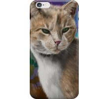 Beautiful Furry and Fluffy Brown Cat Portrait iPhone Case/Skin