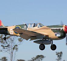 Curtis P-40 Kittyhawk by UpUpandAway