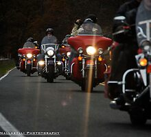 Hardley Davidson Bikers by vishphotography