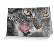 What's for Supper? asks the Tabby Cat Greeting Card