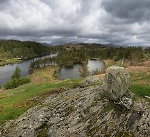 Tarn Hows Lake District  by eddiej