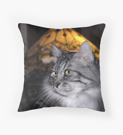 My Cat Dusty Throw Pillow