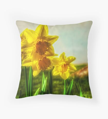 Don't Be Dafft Throw Pillow