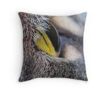 A Cats Eye View Throw Pillow