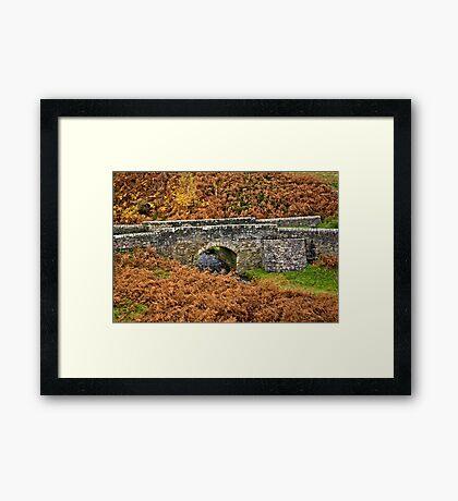 Road Bridge. Framed Print