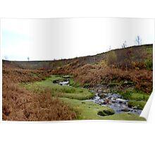 Moorland Stream Poster